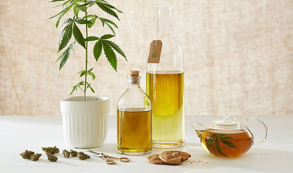 Look At the Major Difference between CBD Oil and Tincture